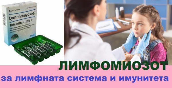 Лимфомиозот за лимфни възли и имунитет