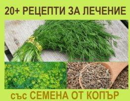Семена от копър, лечение