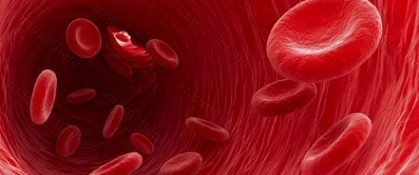 еритроцити в кръвта, еритроцити в урината