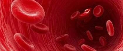 изследване на урина повишени левкоцити и еритроцити