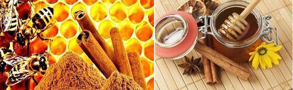 мед и канела ползи