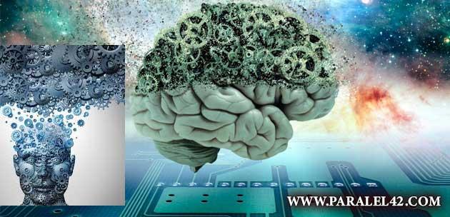 вечен живот, безсмъртие 01 мозък
