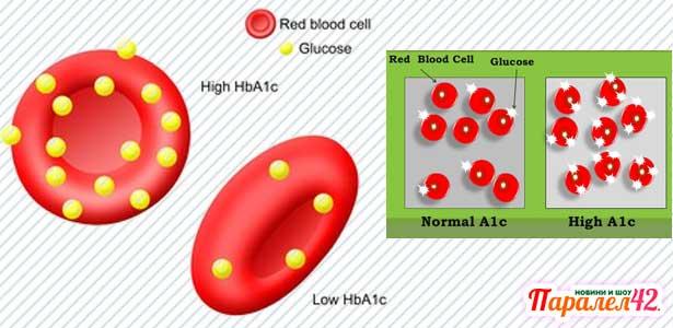 гликиран хемоглобин 017 Разшифровка на резултатите, таблици
