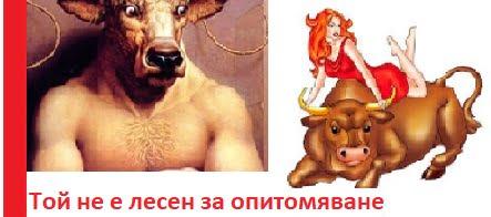 характеристика на мъж телец