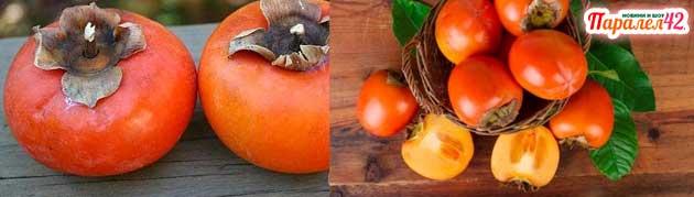 райска ябълка размножаване, рецепти,