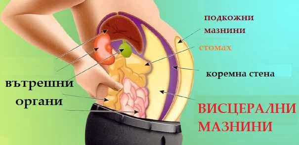 отслабване в корема чрез диета и меню.