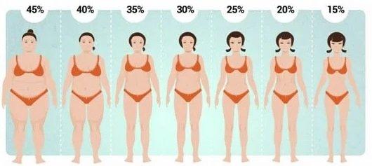 диета за отслабване на корема според съответния процент мазнини