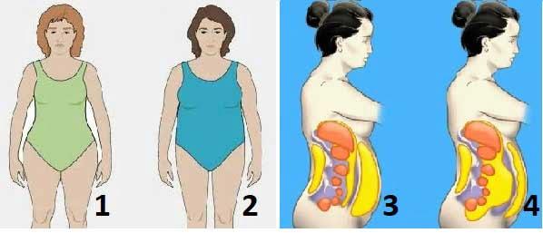 otslabvane-menopauza-05